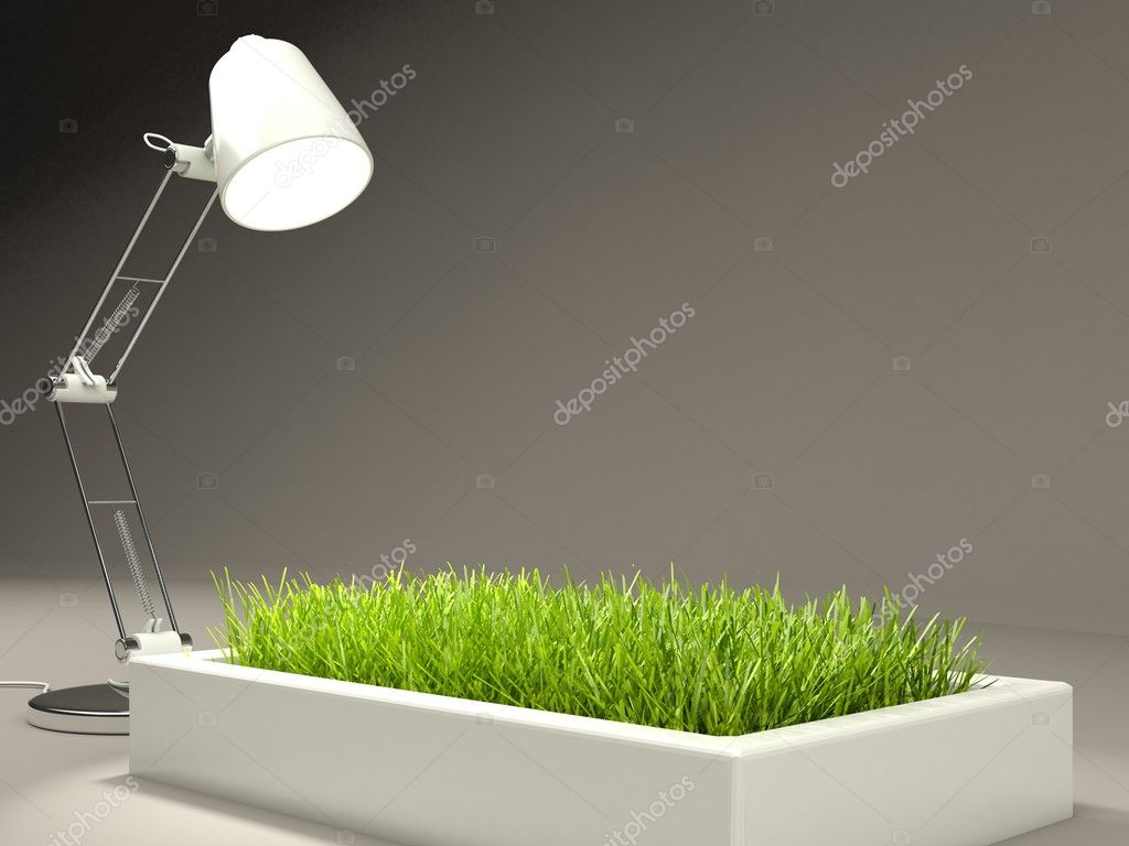 Grass with lamp