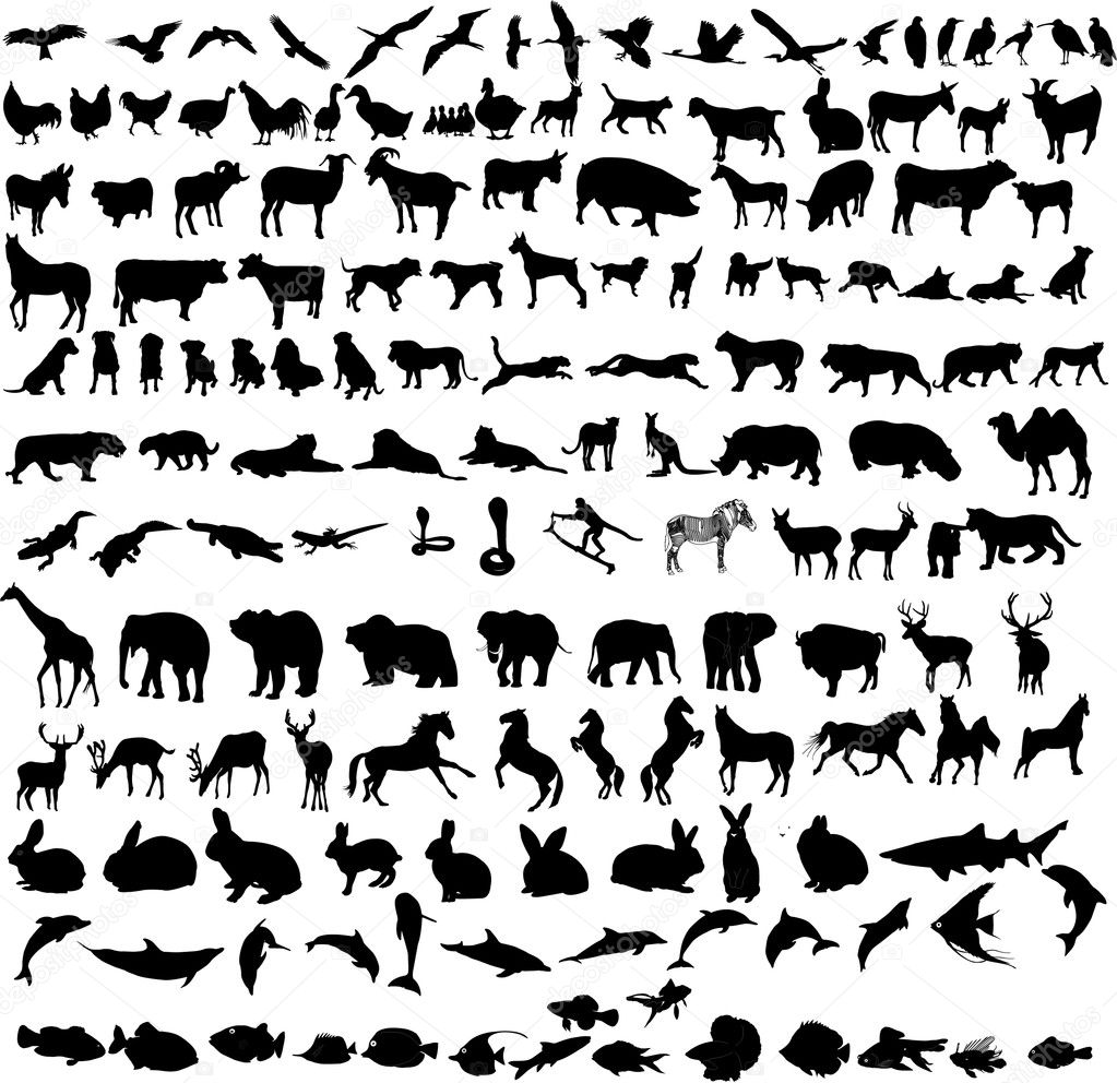 Hundreds different animals - vector stock vector