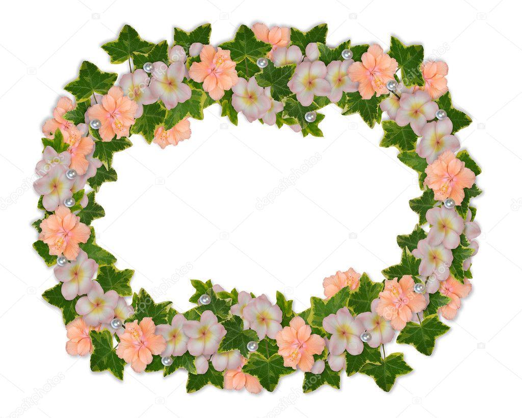 Floral border plumeria and hibiscus