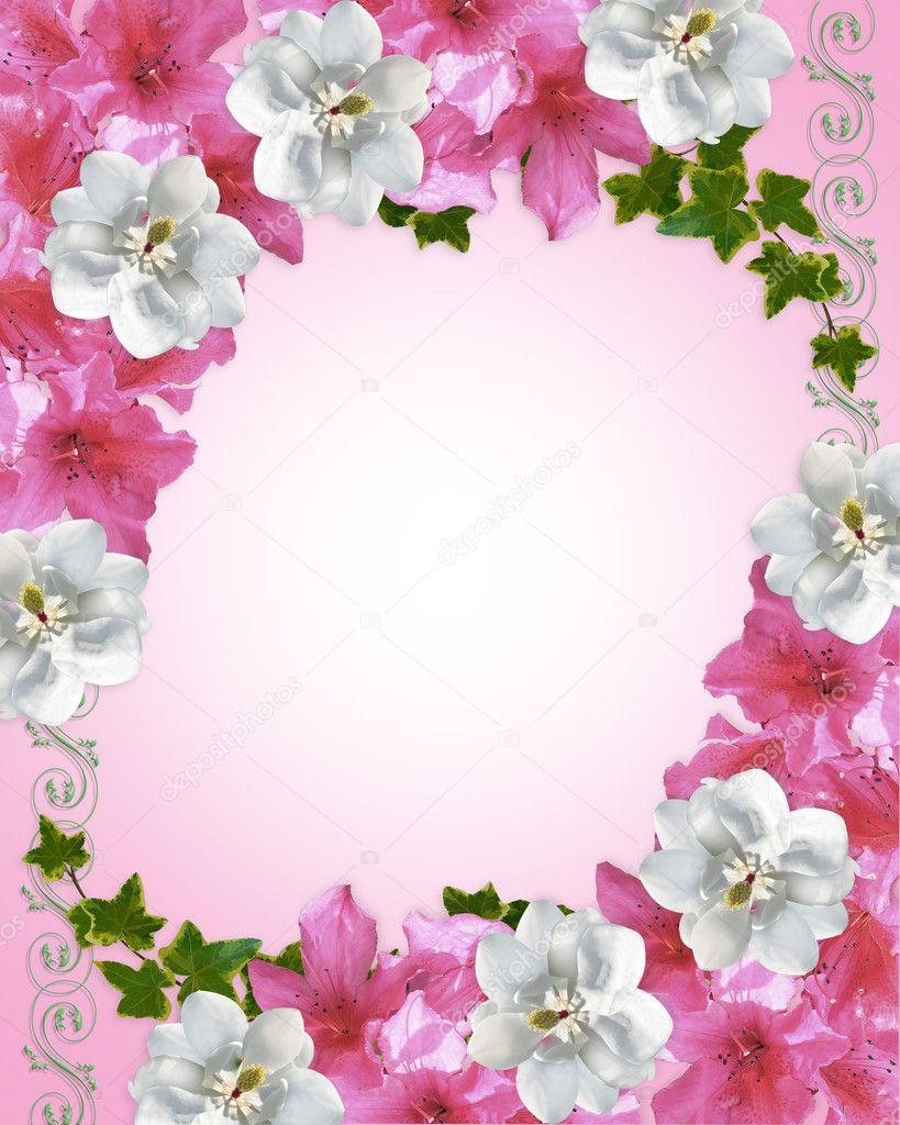 Floral border azaleas and magnolia