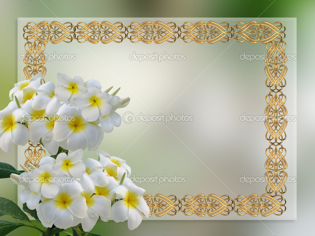 Wedding invitation Plumeria — Stock Photo © Irisangel #3179492