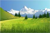 horská krajina s louka