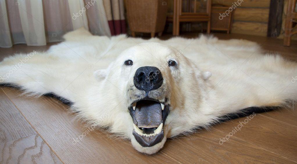 Polar bear skin