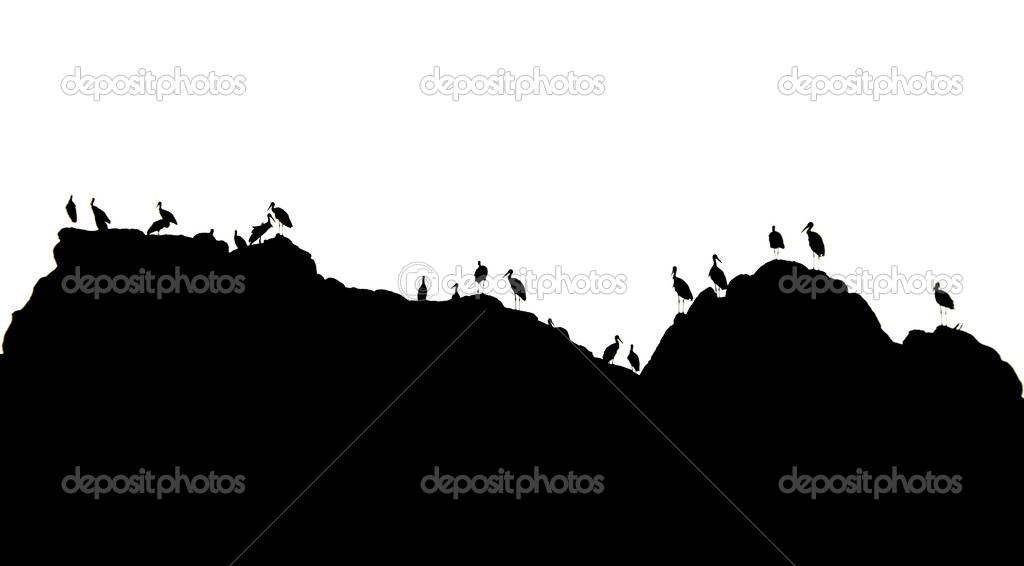 Storks in mountains