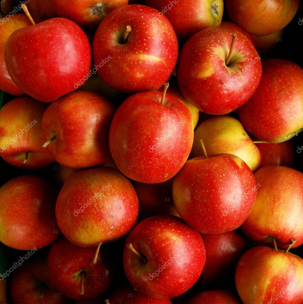 Apples Eliza