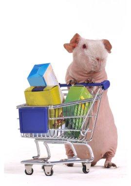 Funny Shopper