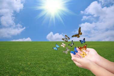 Releasing butterflies on the green grass with blue sky stock vector