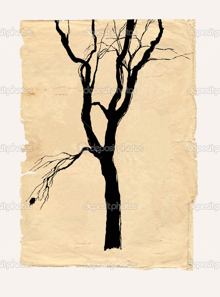 Tree shabby paper pencil drawing