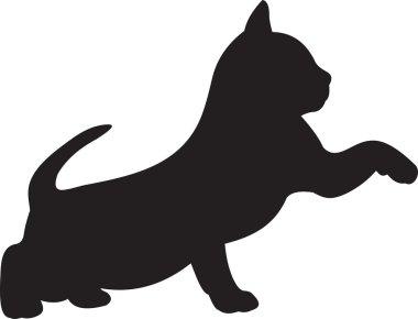 Cat vector