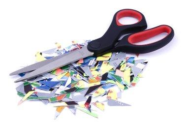 Shredded credit cards