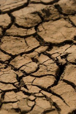 Dry red soil