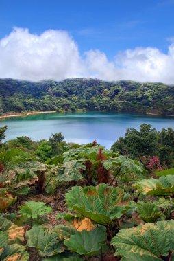 Gorgeous Lake