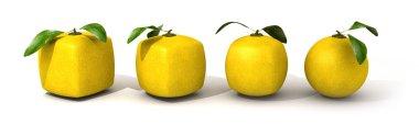 Lemon evolution