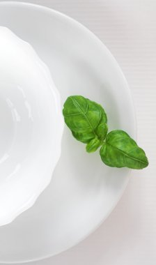 Green vegetable on the white plate