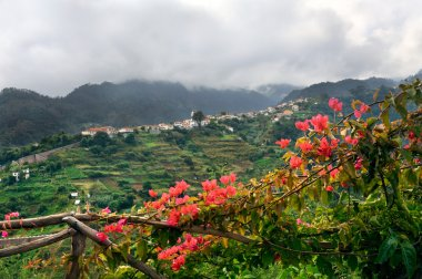 Village on the north coast of Madeira island