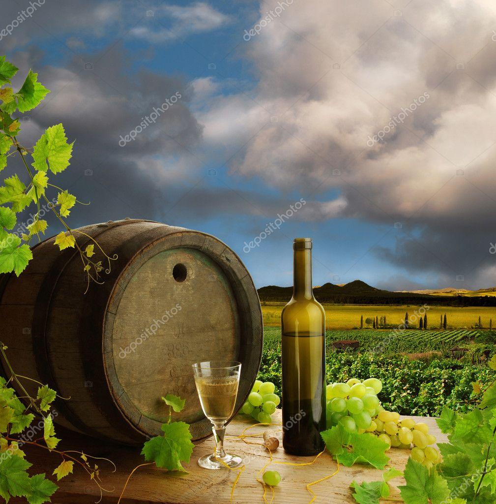 Wine still life and vineyard