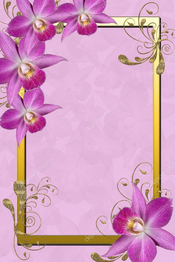 Orchids Frame — Stock Photo © o_april #2831985
