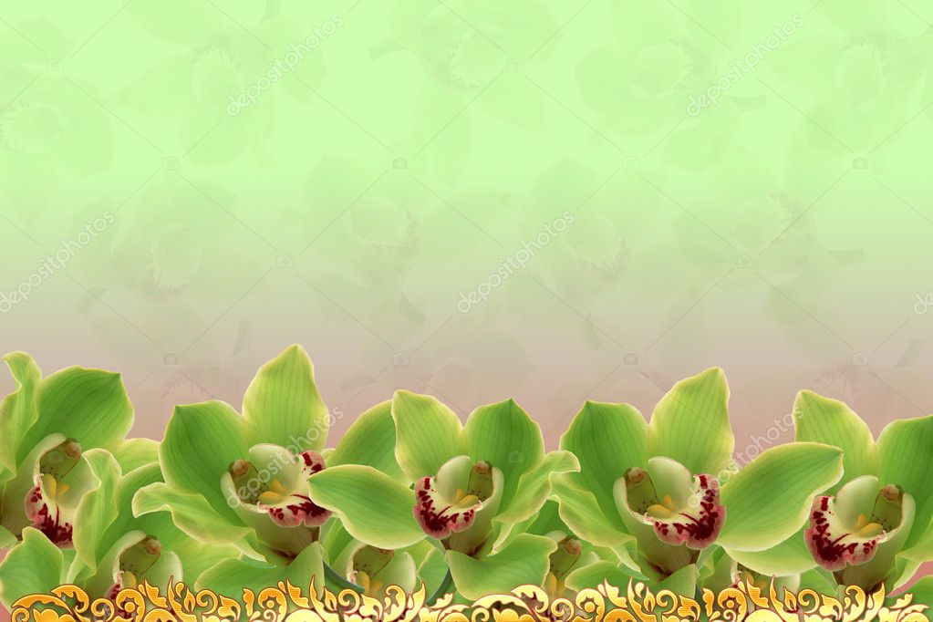 Orchids background