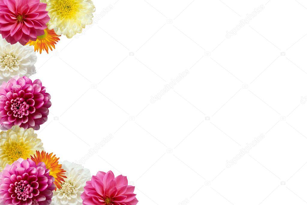 Fondo Blanco Con Marco Marco De Flores De Colores Sobre Fondo