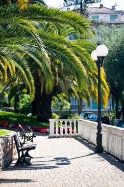 View of sunny italian terrace