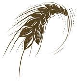 Photo Wheat