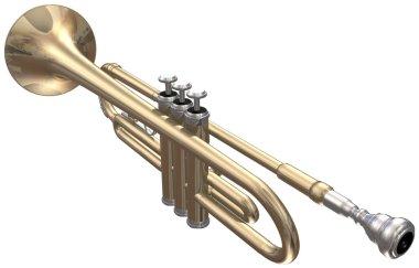 Trumpet on a white