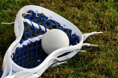 Lacrosse head with ball