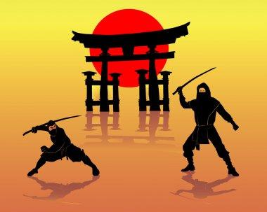 Two ninjas battling