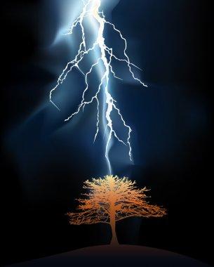 Lightning stroke in a lonely tree