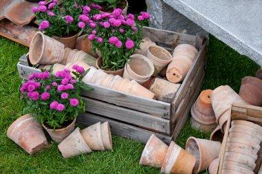Rustic Garden still life