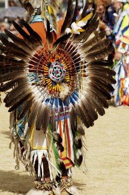 Powwow dancers 10