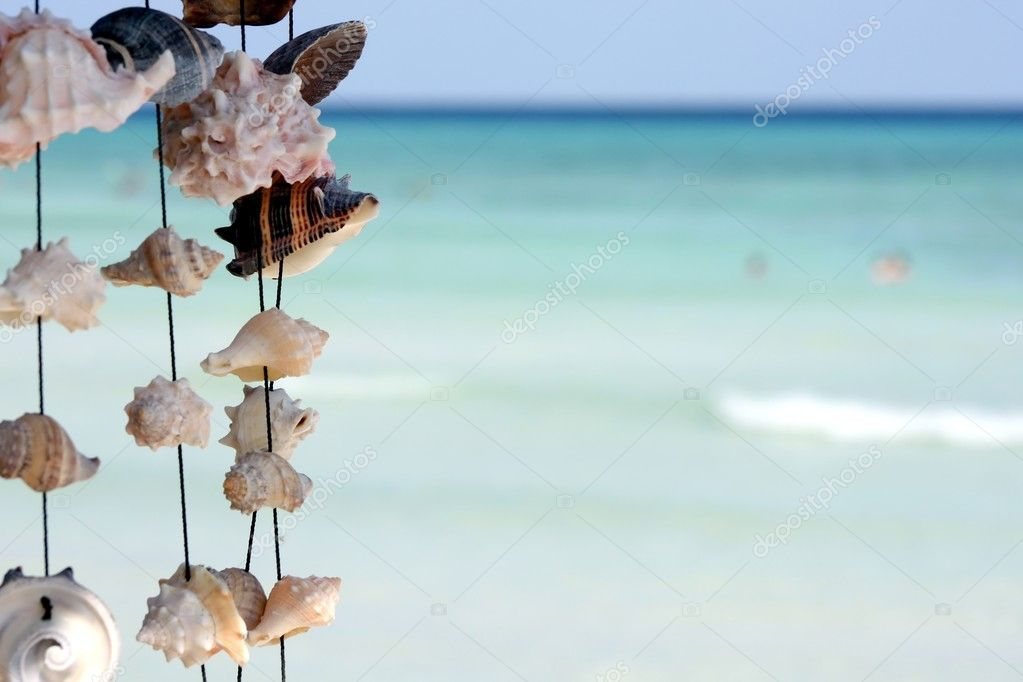 Seashells on ocean background