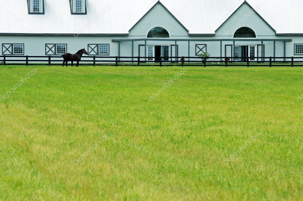 Large Modern Barn With A Horse Stock Photo C Mcgphoto 3659122