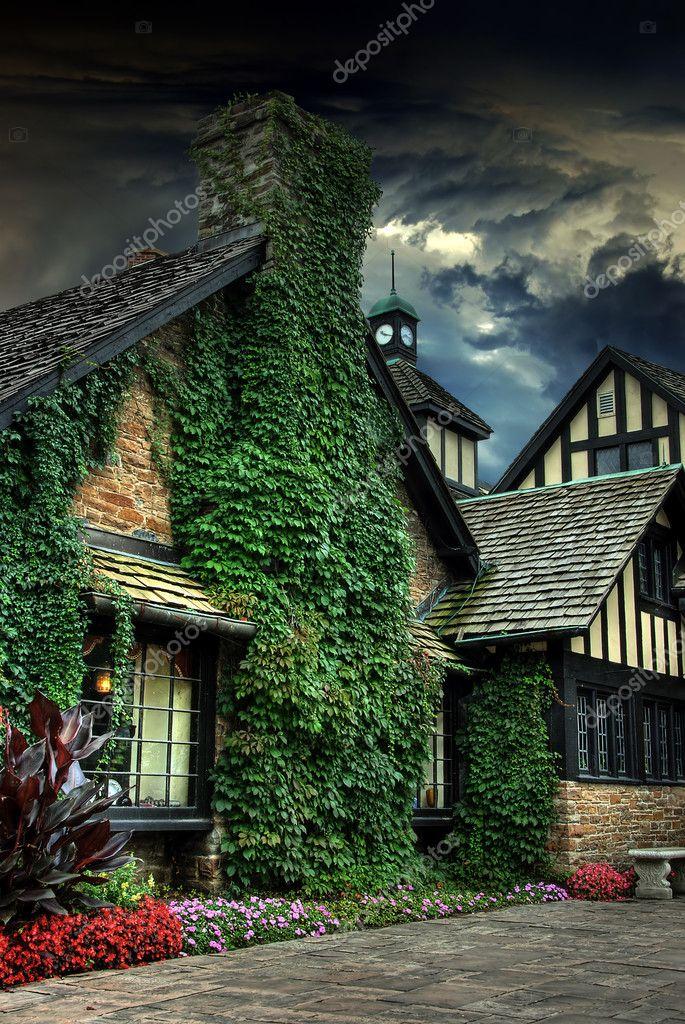 ツル覆われた家 — ストック写真 ...