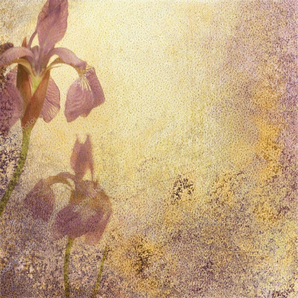 Iris Stationary or Background