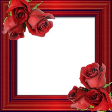 Red roses on a red framework for photos.