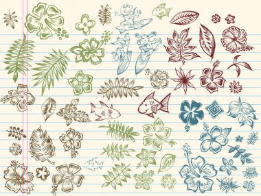 Tropical Summer Sketch Vector Set