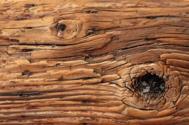 Background Of Knotted Wood