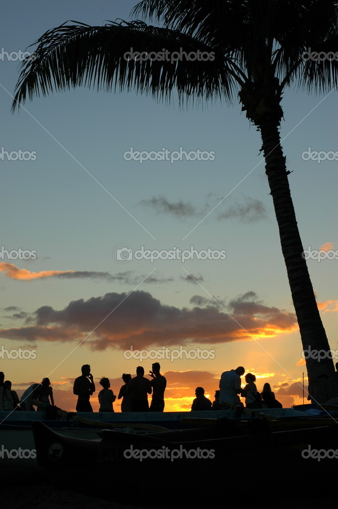Vacation Image of Young at a Sunset Beach Party