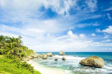 Bathsheba, East coast of Barbados, Caribbean stock vector