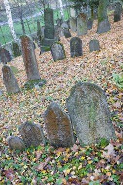 Jewish Cemetery, Trebic, Czech Republic stock vector
