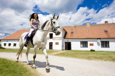 Equestrian on horseback stock vector