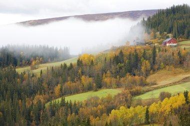 Region of Jotunhejme National Park, Norway