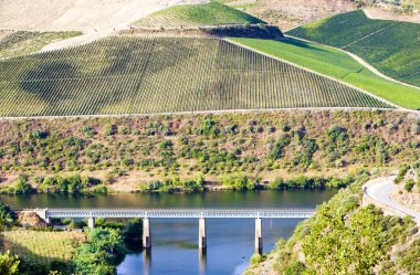 Railway viaduct in Douro Valley, Portugal