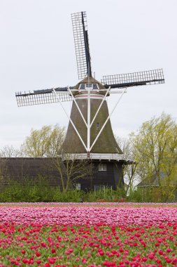 Windmill, Netherlands