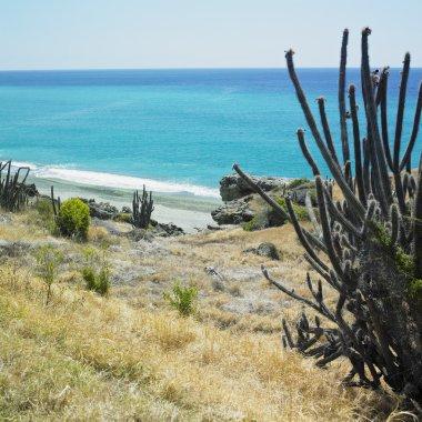 Coastline, the Caribbean Sea, Guant