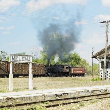 Sugar railway, Gregorio Arlee Manalich sugar factory, Cuba