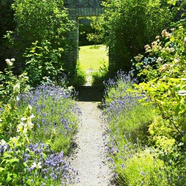 Ballinlough Castle Gardens