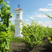 kaplička s vinic nedaleko perna, Česká republika