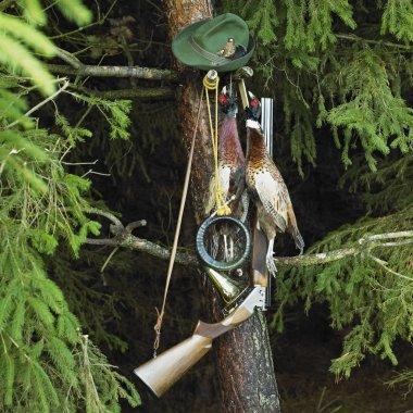 Pheasants still life
